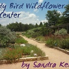 Lady Bird Johnson Nature Center