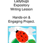 Ladybug Expository Writing Hands-On Activities