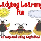 Ladybug Learning Fun