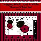 Ladybug Red, Black, & White Theme Class Set