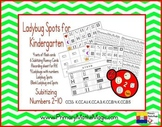 Ladybug Spots Kindergarten Subitizing Numbers 2 through 10