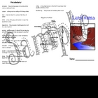 Landforms Unit Trifold Study Guide