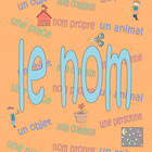 Le nom - French nouns
