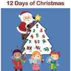 Learning to Count with the 12 Days of Christmas (paperback)