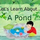 Let&#039;s Learn About A Pond! (Powerpoint)
