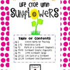 Life Cycle Unit: Sunflowers