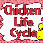 Life Cycle of A Chicken Complete Unit
