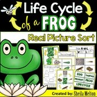 Life Cycle of a Frog {Real pictures to sort, printables an