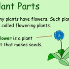 Life Cycle of Seed Plants - Smartboard Lesson