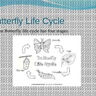 Life Cycle of a Butterfly PowerPoint use with ELA Common C