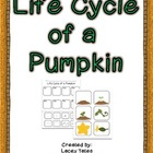 Life Cycle of a Pumpkin {FREEBIE}
