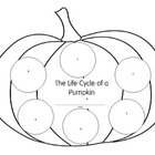Life Cycle of a Pumpkin Writing Activity
