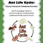 Life Cycle of an Ant - Science Interactive Notebook Activity