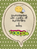 Life Cycles: Butterflies & Bees