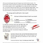 Life Skills - Dental Care