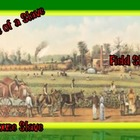 Slavery: House & Field Slaves (6 of 9) Common Core, Constr