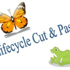 Lifecycle Cut &amp; Paste