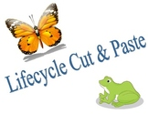 Lifecycle Cut & Paste