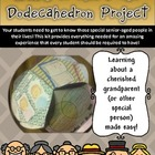 Links to the Past Dodecahedron Project Kit