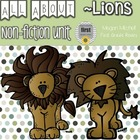 Lions Mini Unit
