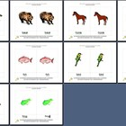 Literacy/Vocabulary/Montessori Nomenclature Cards: Animals