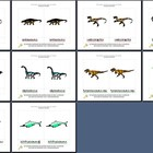 Literacy/Vocabulary/Montessori Nomenclature Cards: Dinosaurs