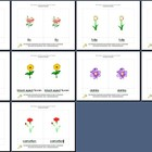 Literacy/Vocabulary/Montessori Nomenclature Cards: Flowers - 1