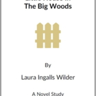 Little House in the Big Woods -  (Reed Novel Studies)