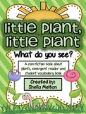 Life Cycle of a Plant {Non-Fiction Reader and Student Voca