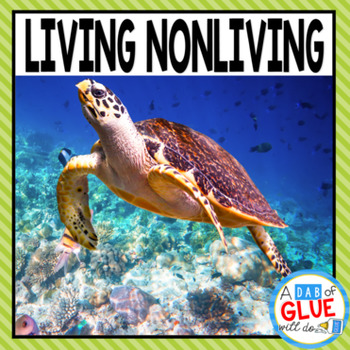 Living Nonliving Unit