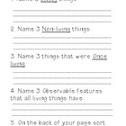 Living and non living things worksheet or quiz