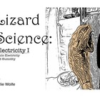 Lizard Science: Electricity 1, Static Electricity and Humidity
