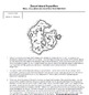 Lord of the Flies by William Golding Desert Island Activity Pack
