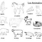 Los Animales Picture Word Bank