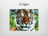 Los animales (PPT-digital file)