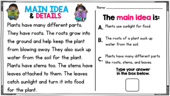 Main Idea and Details Practice (Common Core)