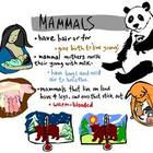 Mammal Literature Web