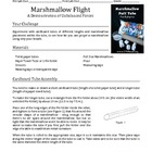 Marshmallow Flight Lab