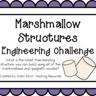 Marshmallow Structures: Engineering Challenge Project ~ Gr