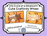 Mealworm (Darkling Beetle) Life Cycle Wheel Craftivity {BI