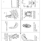 Mealworm Life Cycle  Mini-book