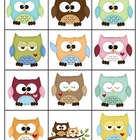 Memory Game Owls