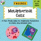 Metaphorical Cells: A Fresh Take on Organelle Functions in Cells