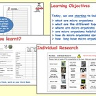 Micro organisms - 1. Introduction (Powerpoint, Worksheets