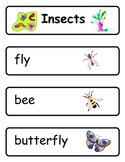 Mini Word Book-Insect Words