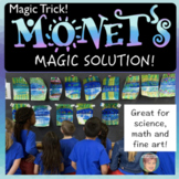 Monet's Magic Solution - Reflections & Symmetry