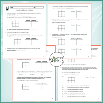 Monohybrid Cross Worksheet (Genetics Practice Problems)