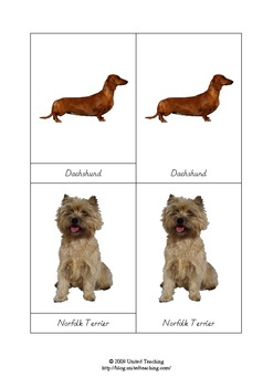 Montessori Three Part Cards Types of Dogs