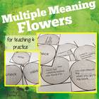 Multiple Meaning Chalk Flowers