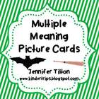 Multiple Meaning Picture Cards